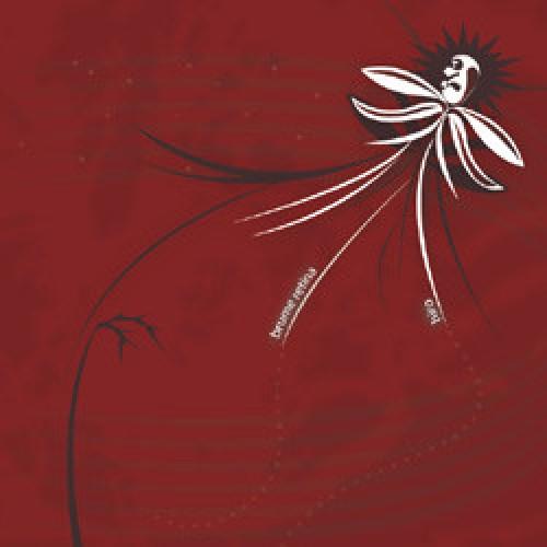 "Brume Retina -  Hiro ""split"" / CD"