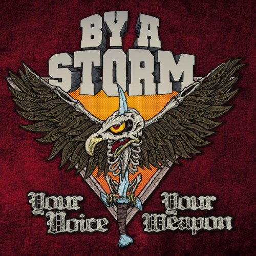 By A Storm – Your Voice Your Weapon / LP